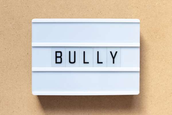 Bully Profiles-Part One-Bully